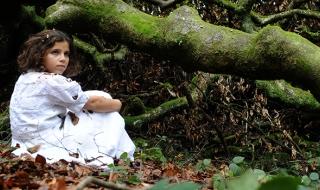 La Forêt des âmes : Clôture de résidence
