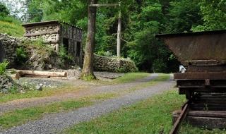Restauration du camp de la Vallée Moreau