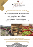 Journée au coeur de la Vendange - Champagne Vollereaux