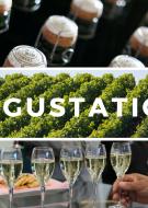 Dégustation du Champagne JM Pelletier