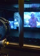 War on Screen - Festival international de cinéma