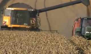 Agro-ressources et chimie verte